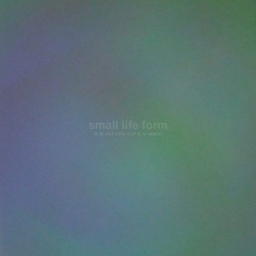 Small Life Form: It Is Not Safe But It Is Warm (2015)