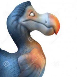 Profile picture of dodo4eva